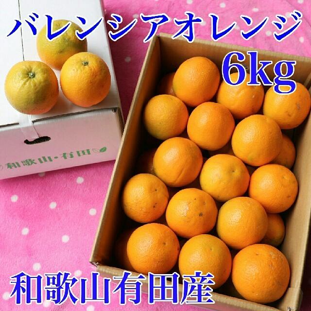 和歌山有田産 バレンシアオレンジ 6kg(送料込み) 食品/飲料/酒の食品(フルーツ)の商品写真