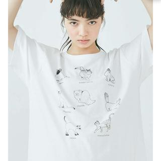 merry jenny - merry jenny 猫図鑑 tシャツ ホワイト
