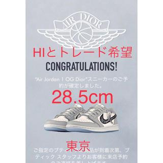 NIKE - Dior × Nike Air Jordan 1 Low
