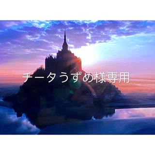 コーチ(COACH)のCOACH コーチ 新品 男女兼用☆ レザー パイソン 長財布☆F53659(長財布)
