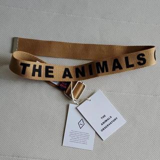 こどもビームス - 2020SS/THE ANIMALS OBSERVATORY ベルト