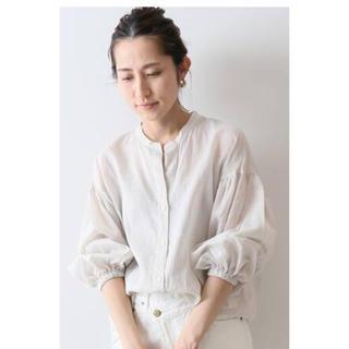 FRAMeWORK - 新品 ラミーバンドカラーシャツ
