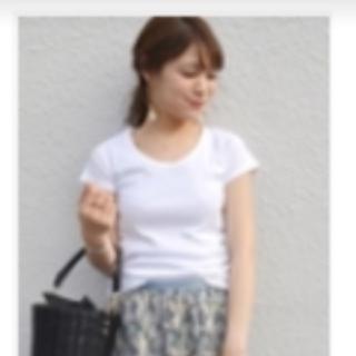 シップス(SHIPS)のSHIPS完売 新品 Tシャツ 白 サイズ36 定価3520円(Tシャツ(半袖/袖なし))