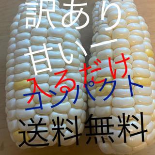 2箱‼️訳あり品ホワイトとうもろこしコンパクト入るだけ❗️(野菜)