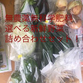 無農薬無科学肥料新鮮野菜詰め合わせセット(野菜)