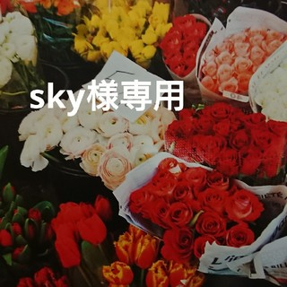 ☆sky様専用☆(その他)