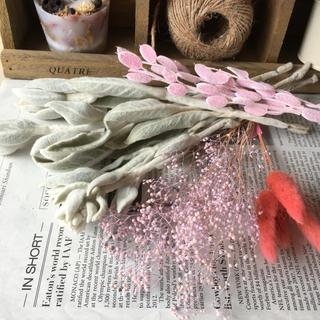 ラムズイヤーとピンクの花材 ドライフラワー  スワッグ ガーランドなどに(ドライフラワー)