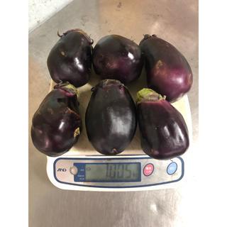 訳あり水茄子1kg(野菜)