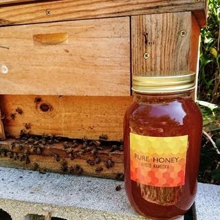国産 蜂蜜 なべいんこ様専用出品です(その他)