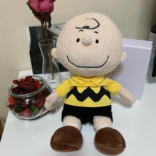 スヌーピー(SNOOPY)のチャーリーブラウン ぬいぐるみ(ぬいぐるみ)