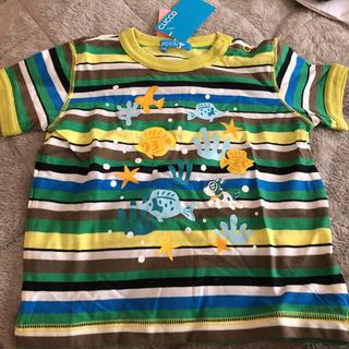ファミリア(familiar)のジャスミン様専用cucco 新品未使用タグ付きTシャツ2枚セット(Tシャツ/カットソー)