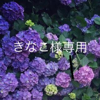 ☆きなこ様専用☆(ピアス(両耳用))