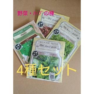 野菜の種 ハーブの種 4種セット 有機種子 種子 種 無農薬 オーガニック(野菜)