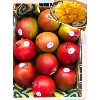 アップルマンゴー 大玉10個(約4kg)(フルーツ)