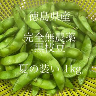 徳島県産 完全無農薬 枝豆 1kg(野菜)