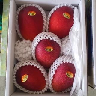 秀品【沖縄県産 マンゴー】 5玉(フルーツ)