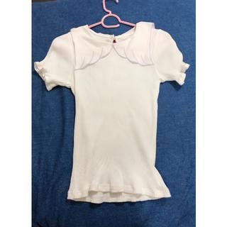 アンクルージュ(Ank Rouge)のアンクルージュ天使の襟 トップス(Tシャツ(半袖/袖なし))