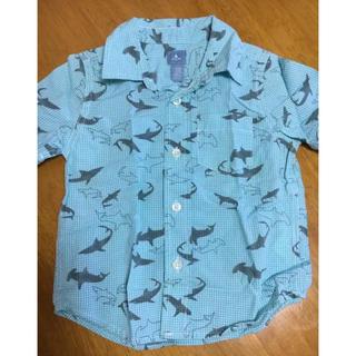 ベビーギャップ(babyGAP)の美品 GAP サメ柄シャツ(Tシャツ/カットソー)