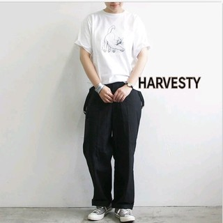 YAECA - 美品⭐ハーベスティ HAVESTY cat プリントTシャツ ホワイト