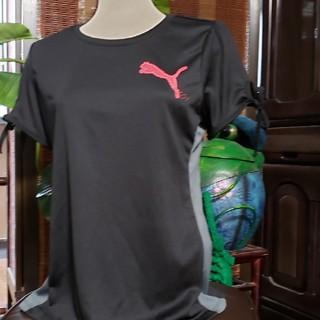PUMA - PUMA 新品 Tシャツ