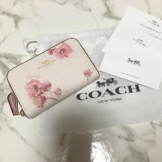 COACH - 【新品】コーチ コインケース 花柄