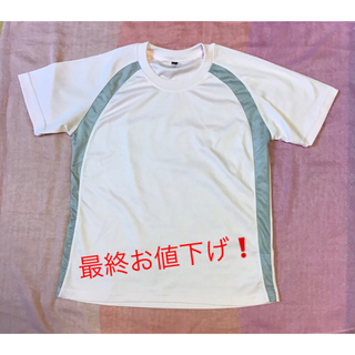 ティーシャツ 半袖 レディース