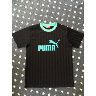 プーマ(PUMA)のPUMA半袖Tシャツ160cm(ウェア)