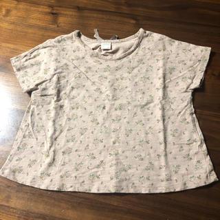 futafuta - テータテート    Tシャツ  100
