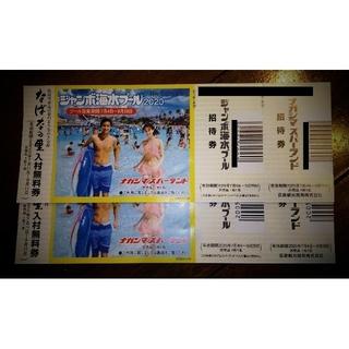 ナガシマスパーランド・海水プール チケット(遊園地/テーマパーク)