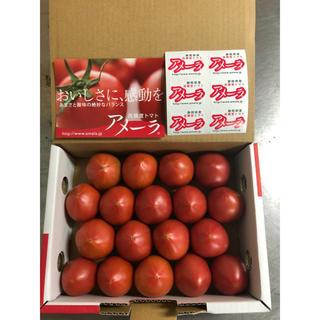 DUO様専用 2箱 静岡県フルーツトマト アメーラ18玉〜19玉(野菜)