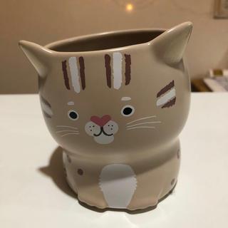 スターバックスコーヒー(Starbucks Coffee)の★Starbucks★台湾限定 スターバックス 355ml 傾いてる ネコちゃん(マグカップ)