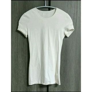 ドルチェアンドガッバーナ(DOLCE&GABBANA)のドルチェ&ガッバーナ  シンプルTシャツ  サイズM    送料無料(Tシャツ(半袖/袖なし))