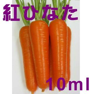 残約40ml:人参の種「紅ひなた」コート種子 約10ml (約250粒)(野菜)