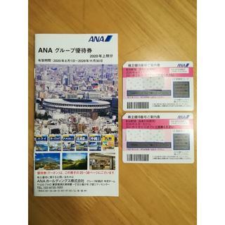 エーエヌエー(ゼンニッポンクウユ)(ANA(全日本空輸))のANA株主優待券 2枚 2021年5月末まで(航空券)