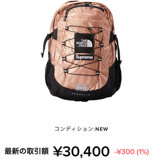 Supreme - Supreme The North Face  Backpack 未使用