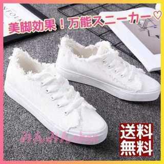 【新品】ホワイト*美脚効果大の可愛い万能スニーカー*デザインローカットスニーカー