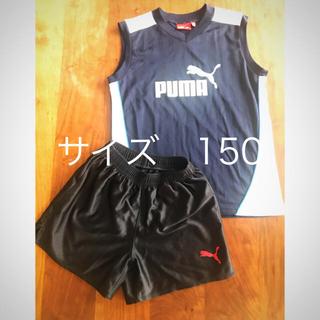 プーマ(PUMA)のプーマ ランニングウェア スポーツウェア PUMA  150cm用(ウェア)