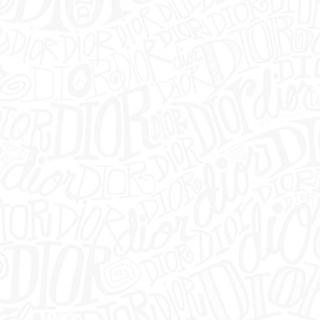 PRADA - PRADA 20SS ナイロン アノラック サイズS 確実正規品
