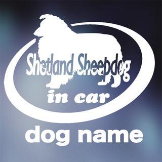 シェットランドシープドッグ in carステッカー、シェルティ、犬ステッカー(犬)
