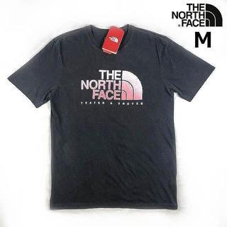 ザノースフェイス(THE NORTH FACE)の売切!ノースフェイス ヴィンテージ風 半袖Tシャツ(M)グレー 180902(Tシャツ/カットソー(半袖/袖なし))