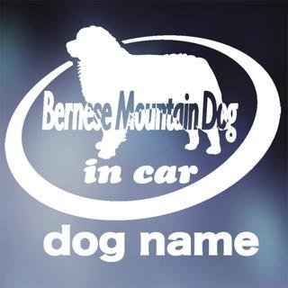 バーニーズマウンテンドッグ in carステッカー、犬ステッカー(犬)