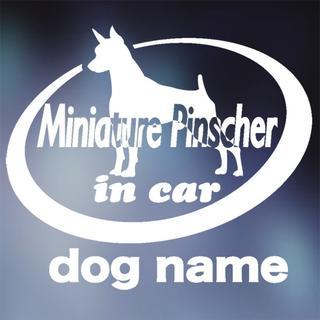 ミニチュア・ピンシャー in carステッカー、ミニピン、犬ステッカー(犬)