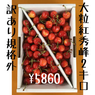 ② 山形県産さくらんぼ 大粒 紅秀峰 【訳あり規格外】2キロ  (フルーツ)