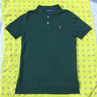 POLO RALPH LAUREN - 半袖襟付きシャツ