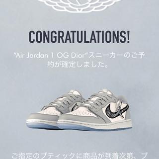 Dior - Dior Jordan Low