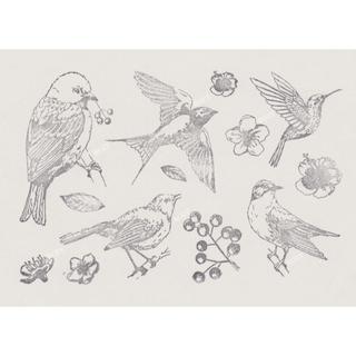 小鳥 木の実 お花 クリアスタンプ  野鳥