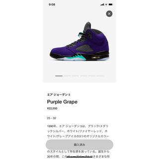 NIKE - エアジョーダン5 Purple Grape
