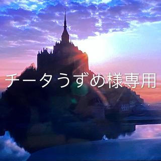COACH - COACH コーチ 新品 再入荷 シグネチャー 桜ピンク 長財布♡