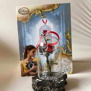 Disney - 美女と野獣 薔薇