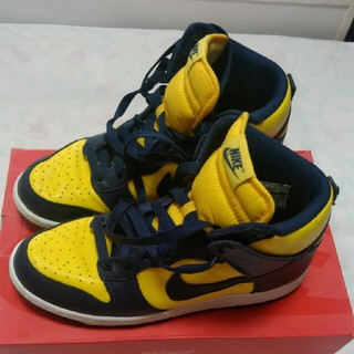 NIKE - Michigan DUNK 28.0